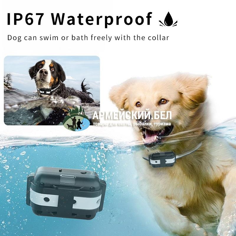 Электронный ошейник для дрессировки или коррекции поведения собак CSW-M783